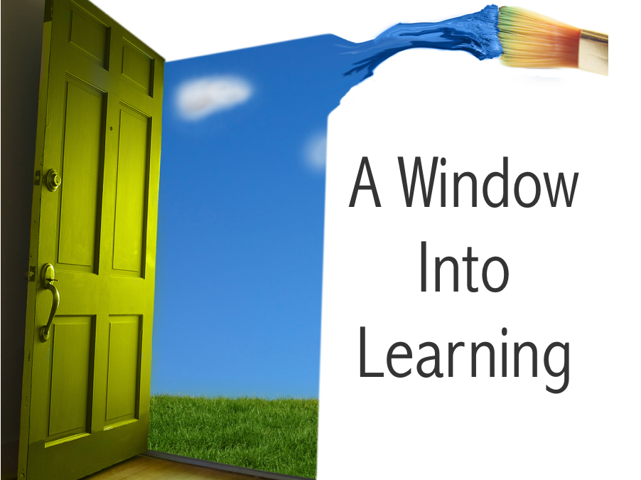 A Window Into Learning